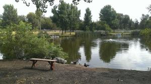 2013-07-05 09.59.24 Hawk Farm Pond in Murietta