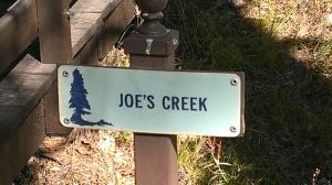 Joe's Creek at Heaps Peak Arboretum in San Bernardino National Forest, CA