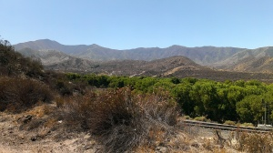 View while bicycling in Soledad Canyon, CA