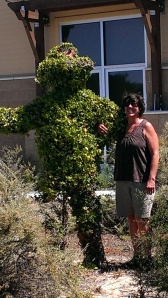 Sherry by bush in front of fire station in Lompoc, CA