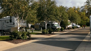 Seven Feathers RV Park in Canyonville OR