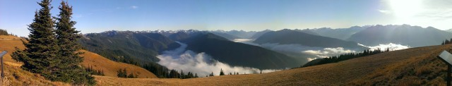 Hurricane Ridge in Olympic National Park, WA