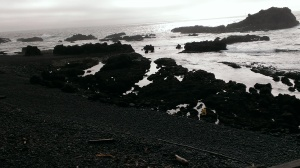 Tide Pools at Yaquina Head, OR