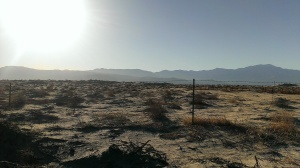 View Bicycling in the Coachella Valley, CA