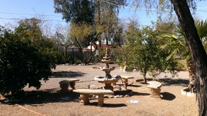 Hansen backyard