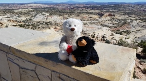 Louie and his new buddy Lil Bear had a great time together